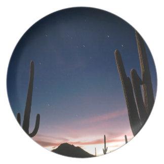 Deserts Star Trails Saguaro Arizona Dinner Plate