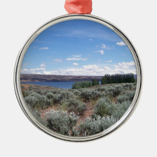 Desertscape con el río adorno navideño redondo de metal