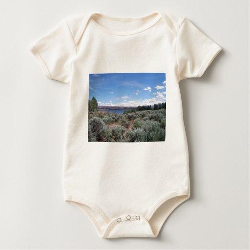 Desertscape con el río mameluco de bebé
