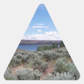 Desertscape con el río pegatina triangular