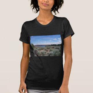 Desertscape con el río poleras