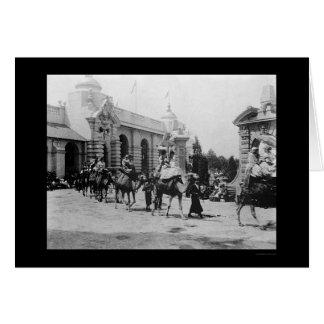 Desfile 1901 del camello de la expo de Pan Am Tarjetón