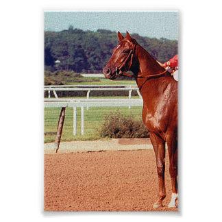 Desfile 1978 del poste de Alydar Belmont Stakes Fotografía