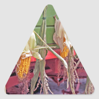 desfile de la acción de gracias pegatina triangular