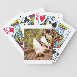 Desfile del pingüino cartas de juego