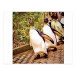 Desfile del pingüino postal