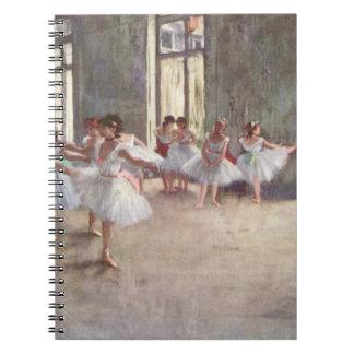 Desgasificaron ensayo del ballet note book