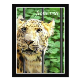 Desgracia en el parque zoológico invitación 10,8 x 13,9 cm
