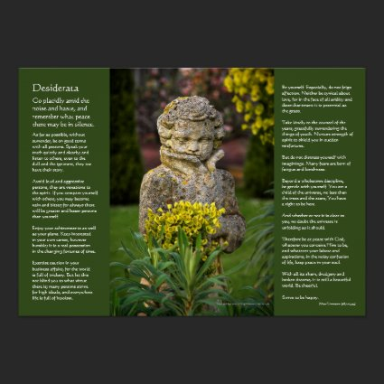 Desiderata - Boy with Spring Posy, garden statue Posters