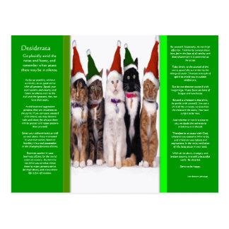 DESIDERATA Christmas Cats Postcard