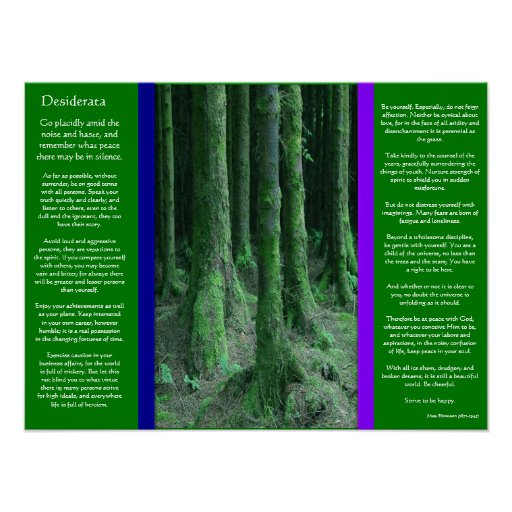 DESIDERATA Dark Mossy Forest Posters Poster