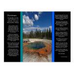 DESIDERATA Emerald Pool Postcard
