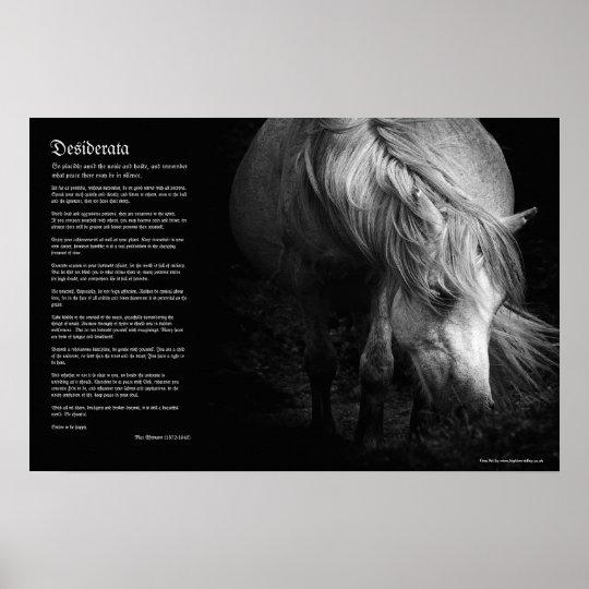 Desiderata - Fine Art Pony Head and Mane Poster