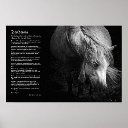 Desiderata - Fine Art Pony Head and Mane Print