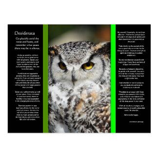 DESIDERATA Great Horn Owl Postcard 1