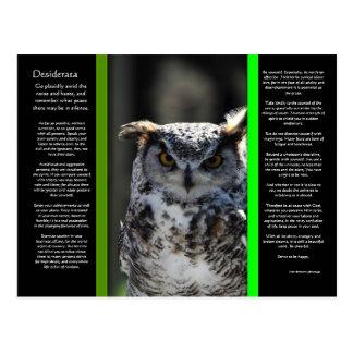 DESIDERATA Great Horn Owl Postcard 5
