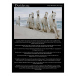 Desiderata horses running Posters Poster