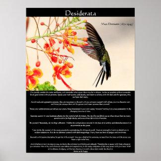 Desiderata Hummingbird buzzing a flower Poster