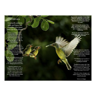 Desiderata Hummingbird Posters
