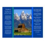 DESIDERATA Mountain Cabin Postcard