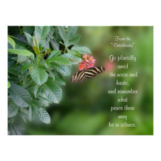 Desiderata On Photo of zebra wing butterfly Poster