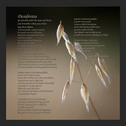 Desiderata Poem on Fruiting Wild Oat Print