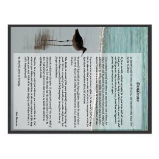 Desiderata Poem - Seagull on the Beach Scene Postcard