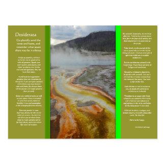 DESIDERATA Thermal Pools Postcard