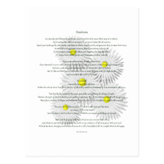 Desiderata with Daisies Postcards