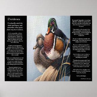 DESIDERÁTUMS dos posters del pato