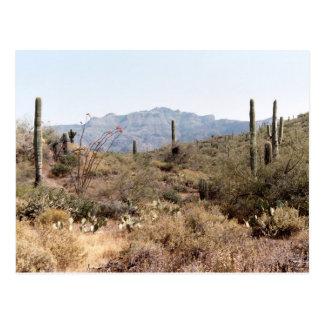 Desierto Arizona de Sonoran Postal