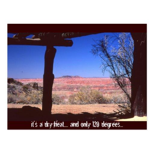 Desierto de Arizona en verano Tarjeta Postal