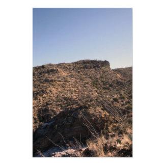 Desierto de Arizona Impresion Fotografica