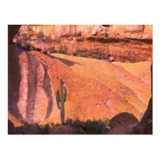 Desierto de Arizona Postal