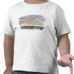 Desierto de Asia, Mongolia, Gobi. Caballos Camisetas