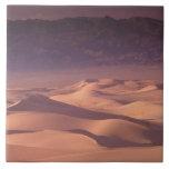 Desierto de Asia, Mongolia, Gobi, Gobi Gurvansaikh Azulejo Cuadrado Grande