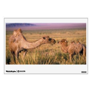 Desierto de Asia, Mongolia, Gobi, gran Gobi