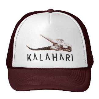 Desierto de Kalahari en África Cráneo muerto del Gorros