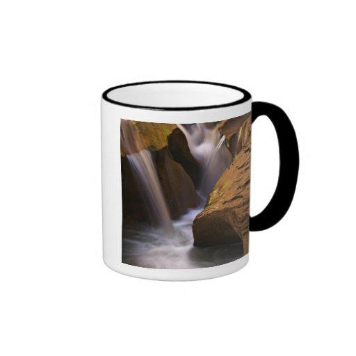 Desierto de los E.E.U.U., Utah, Escalante. Cascada Tazas De Café