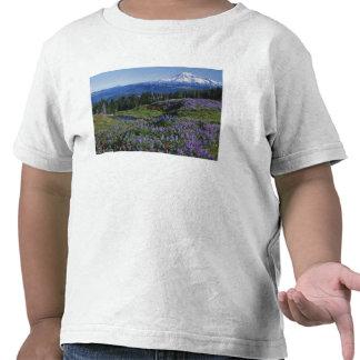 Desierto de los E.E.U.U., Washington Mt. Adams, Camiseta