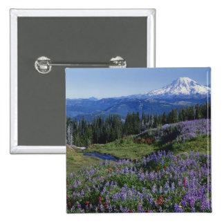 Desierto de los E.E.U.U., Washington Mt. Adams, pr Pins