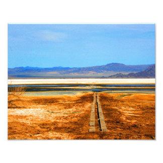 Desierto de Mojave de la foto del desierto ZZYZX Cojinete