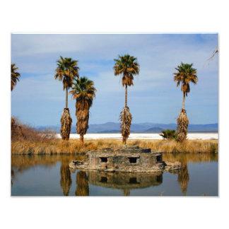Desierto de Mojave del paisaje 11x14 Arte Fotográfico
