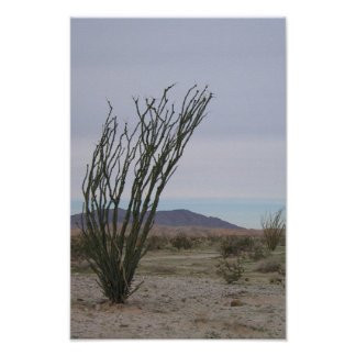 Desierto de Mojave Póster