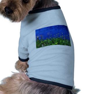 Desierto de montaña de mármol ropa perro