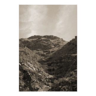 Desierto de Sonoran Impresion Fotografica