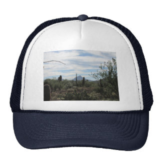 Desierto de Tucson Gorro