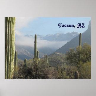 Desierto de Tucson Posters