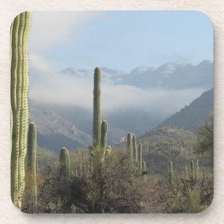 Desierto de Tucson Posavasos