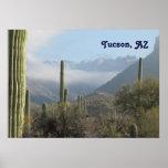 Desierto de Tucson Póster